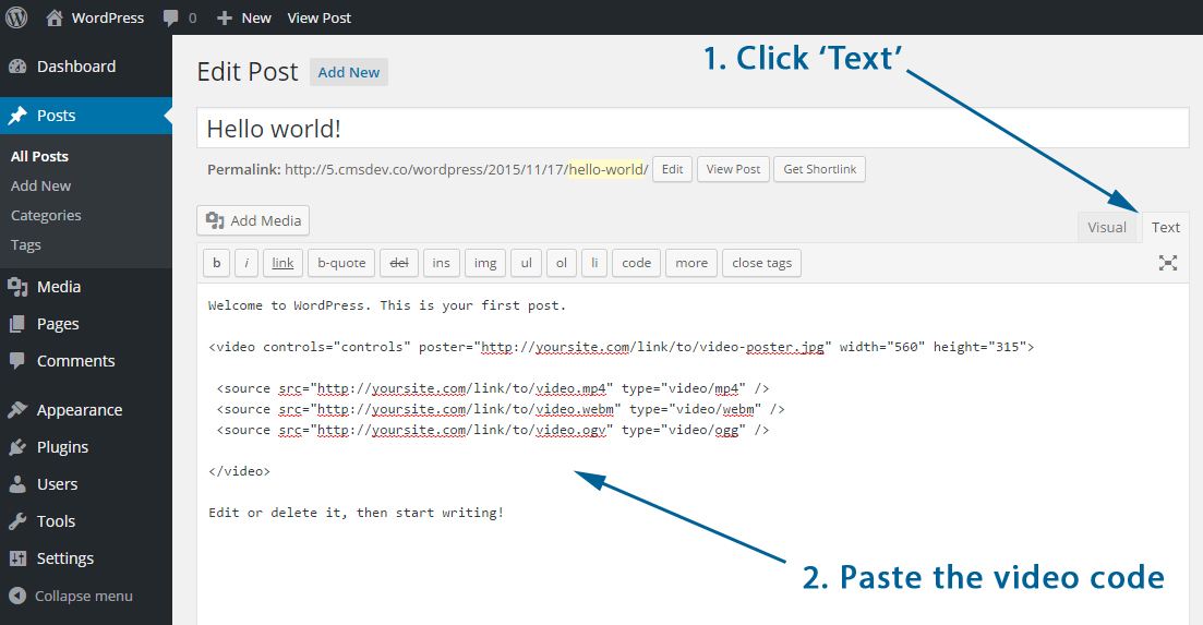 Add HTML video into WordPress editor