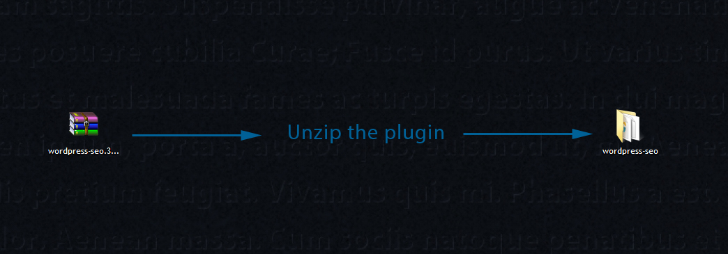 Unzip the plugin